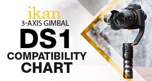 DS1 gimbal
