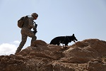U.S. Air Force Staff Sgt. Brent Olson, a military dog handler, and Blek, a military working dog, accompany U.S. Army Soldiers from Charlie Company, 3rd Battalion, 187th Infantry Regiment, 3rd Brigade, 101st Airborne Division, during a mission in the Zirat Mountain Area, Waza Kwah District, Paktika Province, Afghanistan,  July 7, 2010. The purpose of the mission is to disrupt anti-Afghan forces and find enemy caches.  (U.S. Army Photo by Sgt. Jeffrey Alexander/Released)